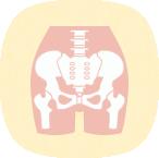 骨盤(背骨)・歪み